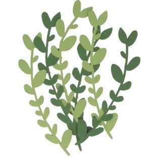 6 hojas de papel salvia alpina