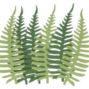 6 feuilles de papier fougères vertes