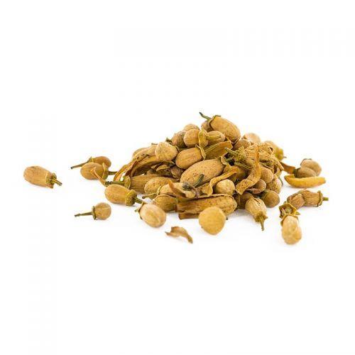 Flores comestibles orgánicas - Azahar 30 g