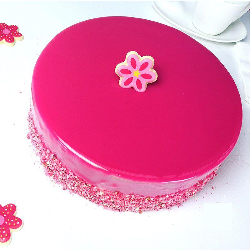Rainbow Cake Kit + stainless extensible Circle