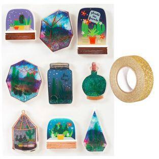 3D Aufkleber Sukkulenten in Gläsern +...