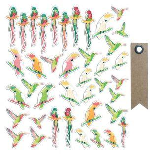 40 Die-cuts - Tropical Birds + 20...