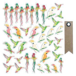 40 formes découpées Oiseaux tropicaux...