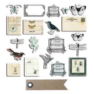 20 formes découpées Cabinet de...