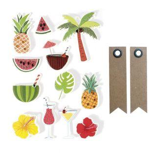 12 stickers 3D Tropical 5,5 cm + 20...