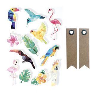 12 stickers 3D Oiseaux tropicaux 6 cm...