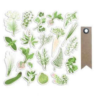 20 Die-Cuts aus Papier - Gemüsegarten...