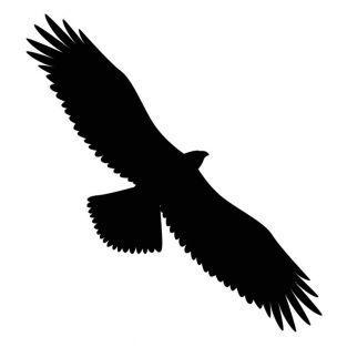 Troqueles de corte y estampado - Águila