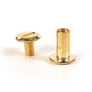 20 golden Chicago screws - leather...