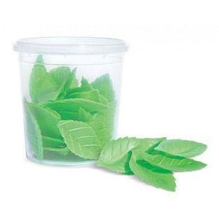Waffel papier - 24 grüne Blätter