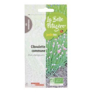 Common Chives - 0.5 g