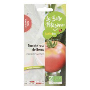 Graines à semer - Tomate Rose de...