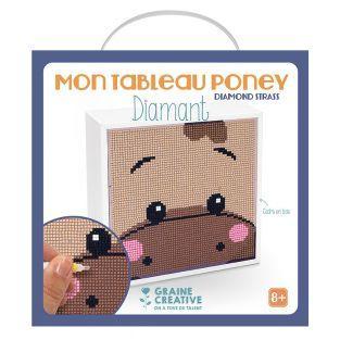 Kit de pintura de diamantes - poni