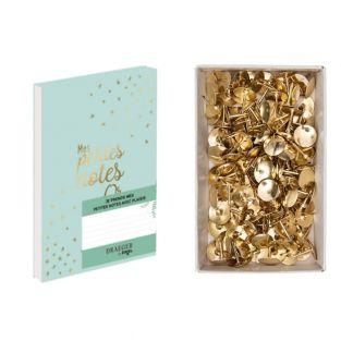Pequeños billetes en cuaderno dorado...