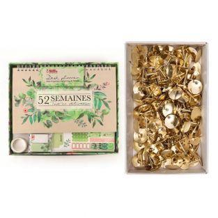 Botanical desk planner + 150 golden...
