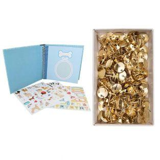 Dog souvenir album box + 150 golden...