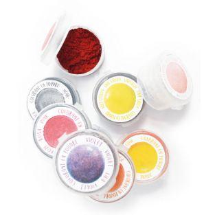 9 mini coloranti alimentari in polvere