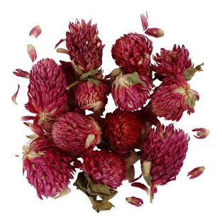 Dried flowers - Red clover - 15 gr