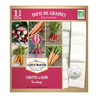 Tappeto di semi di carota e ravanello...