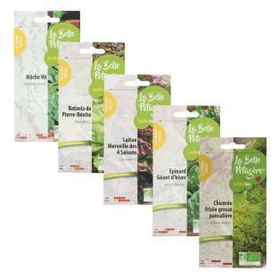 5 bolsitas de semillas para sembrar -...