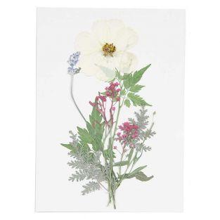 Flores secas y prensadas - Blanco y...