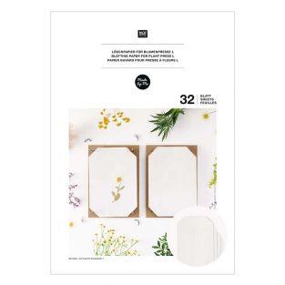 Löschpapier für A4-Blumenpresse
