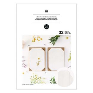 Papel secante para prensa de flores A4