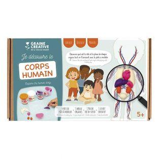 Coffret découverte du corps humain -...