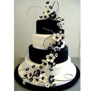 Kit cake 4 levels