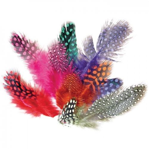100 colored feathers of guinea fowl - 10g
