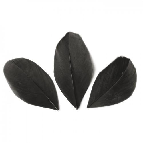 50 cut feathers - Black 60 mm