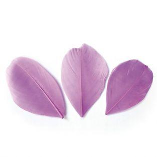 50 cut feathers - Purple 60 mm