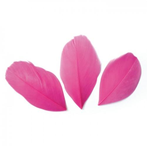 50 plumes coupées - Fuchsia 6 cm