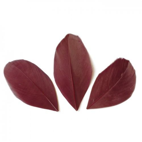 50 cut feathers - Red Bordeaux 60 mm