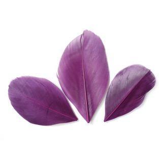 50 cut feathers - Violet 60 mm
