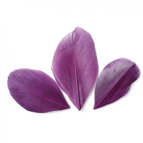 50 plumas cortadas de 60 mm - Violeta