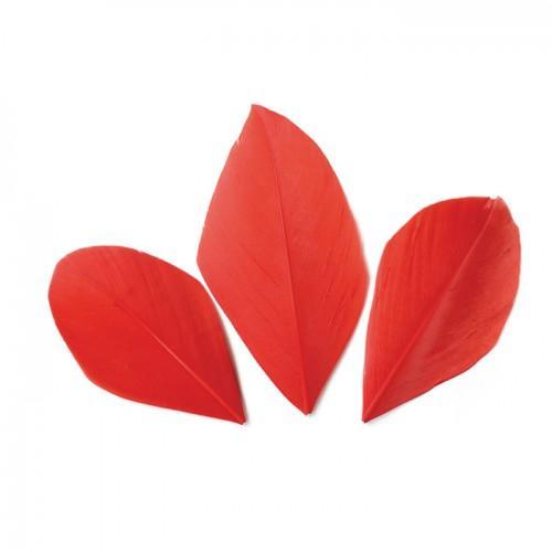 50 plumes coupées - Rouge 6 cm