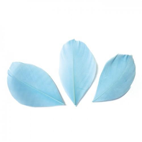 50 plumes coupées - Bleu clair 6 cm