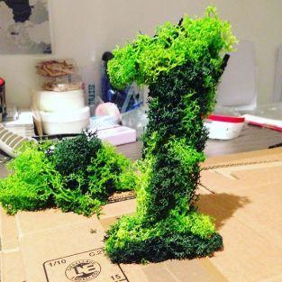 Iceland moss, green light