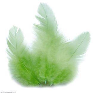 Plumes de coq 10 cm - vert clair