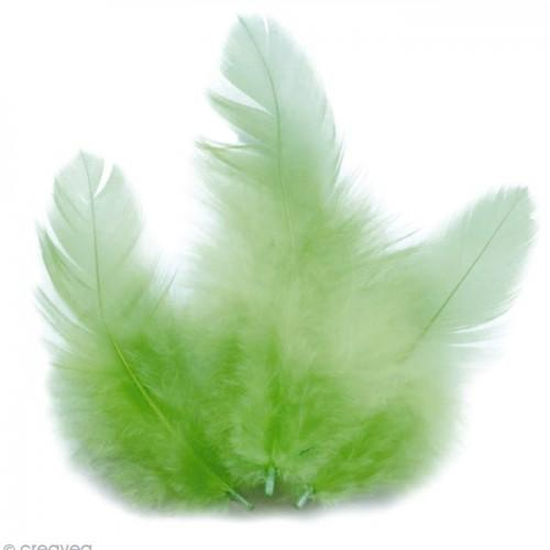Rooster feathers 10 cm - light green