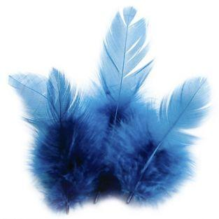 Rooster feathers 10 cm - turquoise