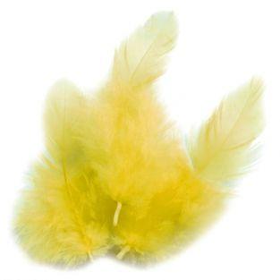 Plumas de gallo 10 cm - amarillo