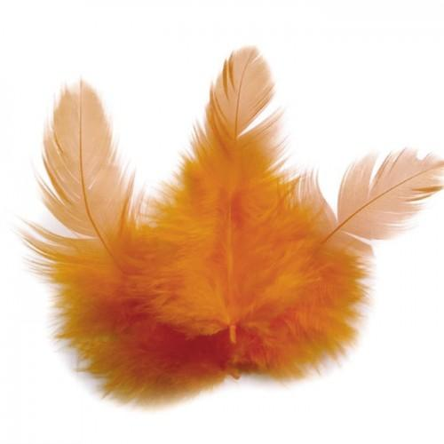 Rooster feathers 10 cm - orange
