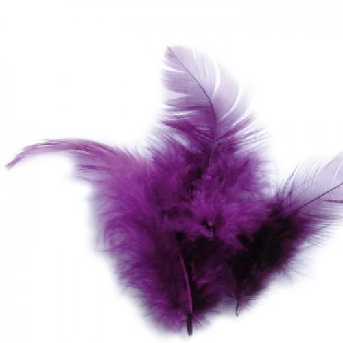 Plumas de gallo 10 cm - púrpura