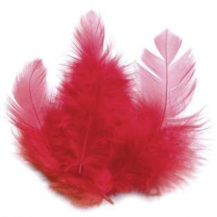 Rooster feathers 10 cm - red