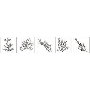 Kit mini wood stamps - Herbs