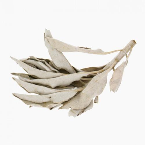 California Sage incense