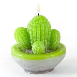 Moule à bougie en latex - Cactus
