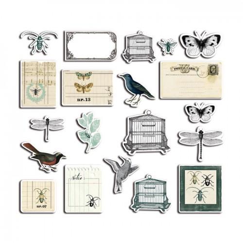 20 formes découpées - Cabinet de curiosités